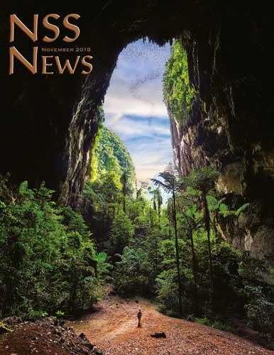 NSS News, November 2018