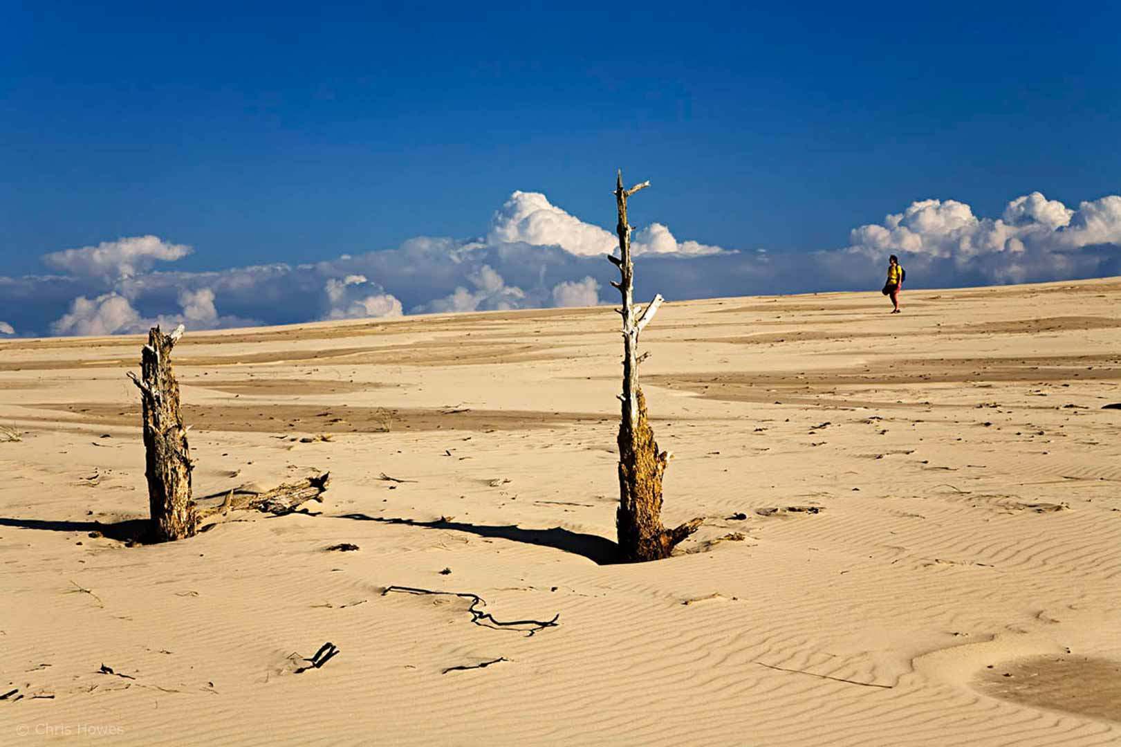Wydma Czolpinska dune, Slowinski national park, Poland
